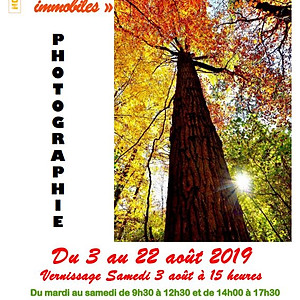 EXPOSITION BEAUMESNIL 2019