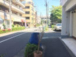 16IMG_5068.JPG