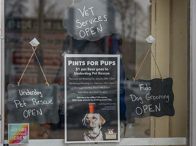 VET SERVICES | Underdog Pet Rescue of Wisconsin