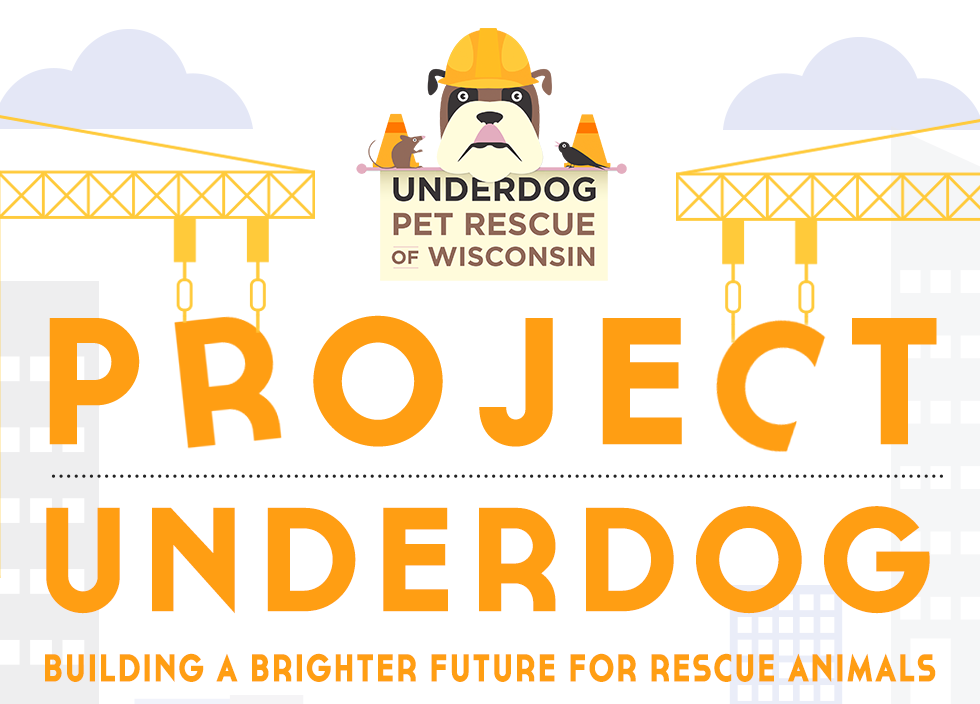project-underdog.png
