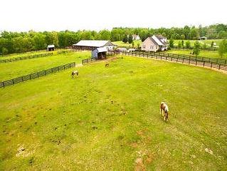 Pasture 1.jpg