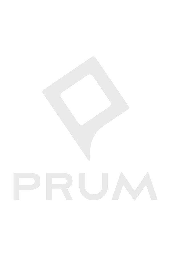 PrumLogo_Horizontal_black_1%25402x_edite