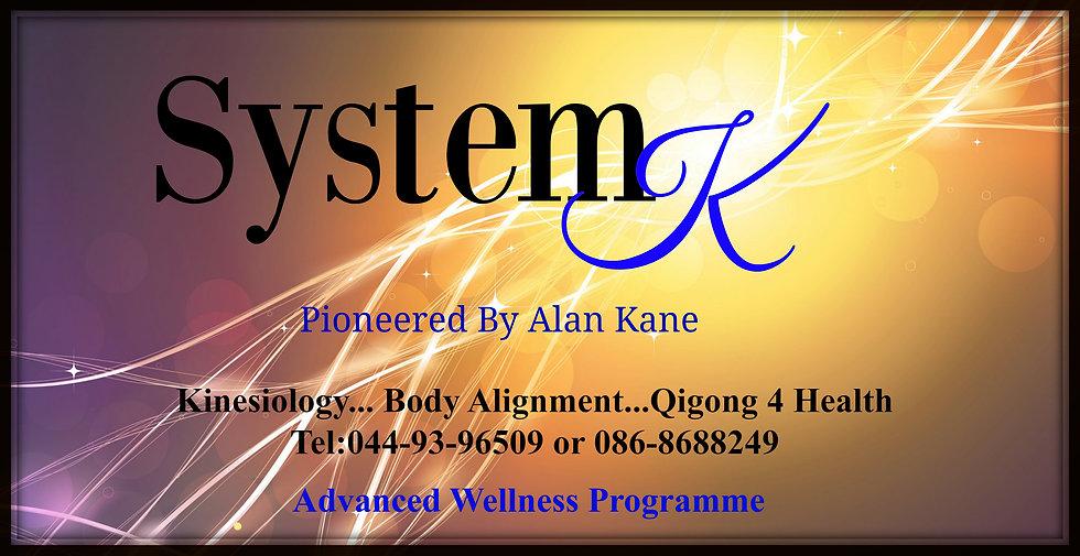 system k biz card front.jpg