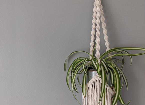 'Pilea' Plant Hanger (with fringe)