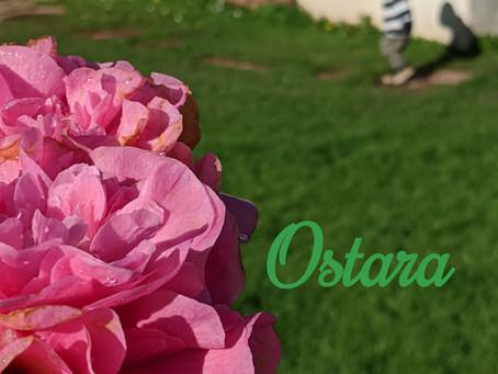 Ostara (Spring Equinox)