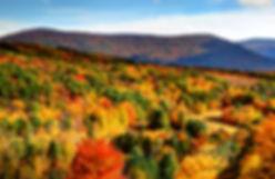 Fall Leaf Peeping
