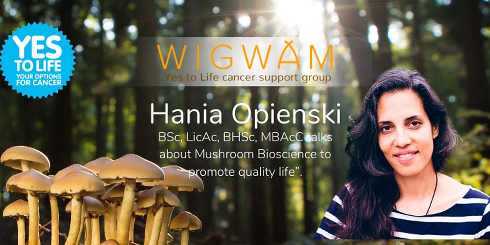 Mushroom Bioscience to promote quality of life
