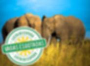 Expedição fotográfica Namíbia e África do Sul - Imagens & Aventuras