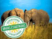 Expedição Fotográfica Namíbia e África do Sul