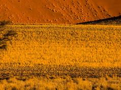 Expedição Fotográfica Namibia