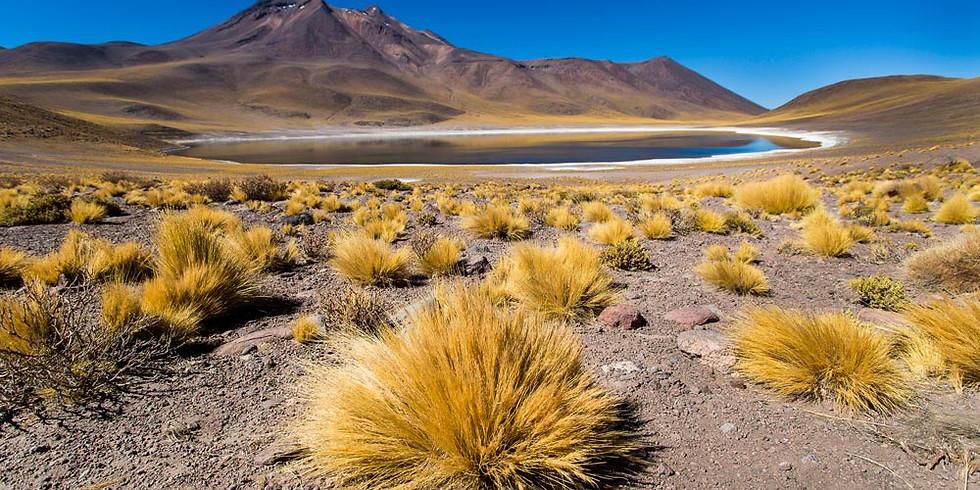 Expedição Fotográfica Atacama 2022
