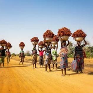 Expedição Fotográfica Benin & Togo 2020