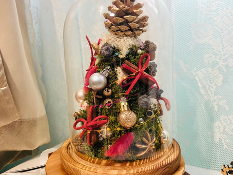 Preserved Christmas Tree