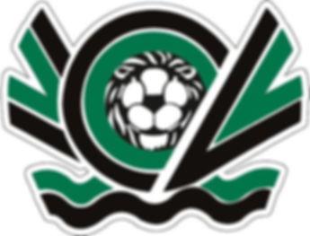 Calcio Nero Verde Venezia senza scritte