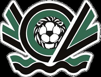 Calcio Nero Verde Venezia TRASPARENTE.pn