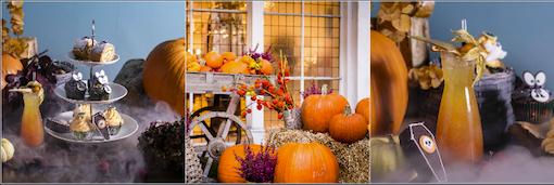 Halloween Bluebird Chelsea