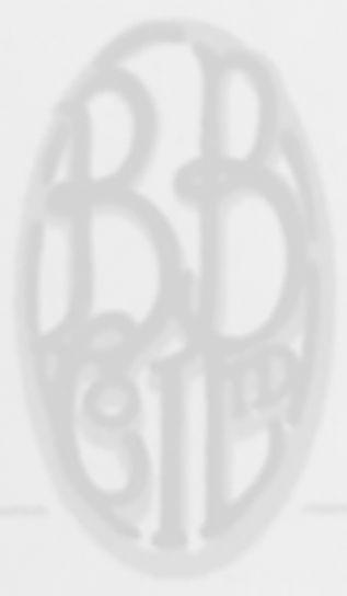 BB LOGO_edited.jpg