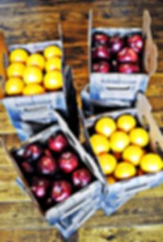 Premium Fruit Crate