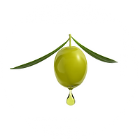 olive_oil_baby_products_one_natural_expe