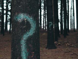 Top 10 Murder Mystery Riddles