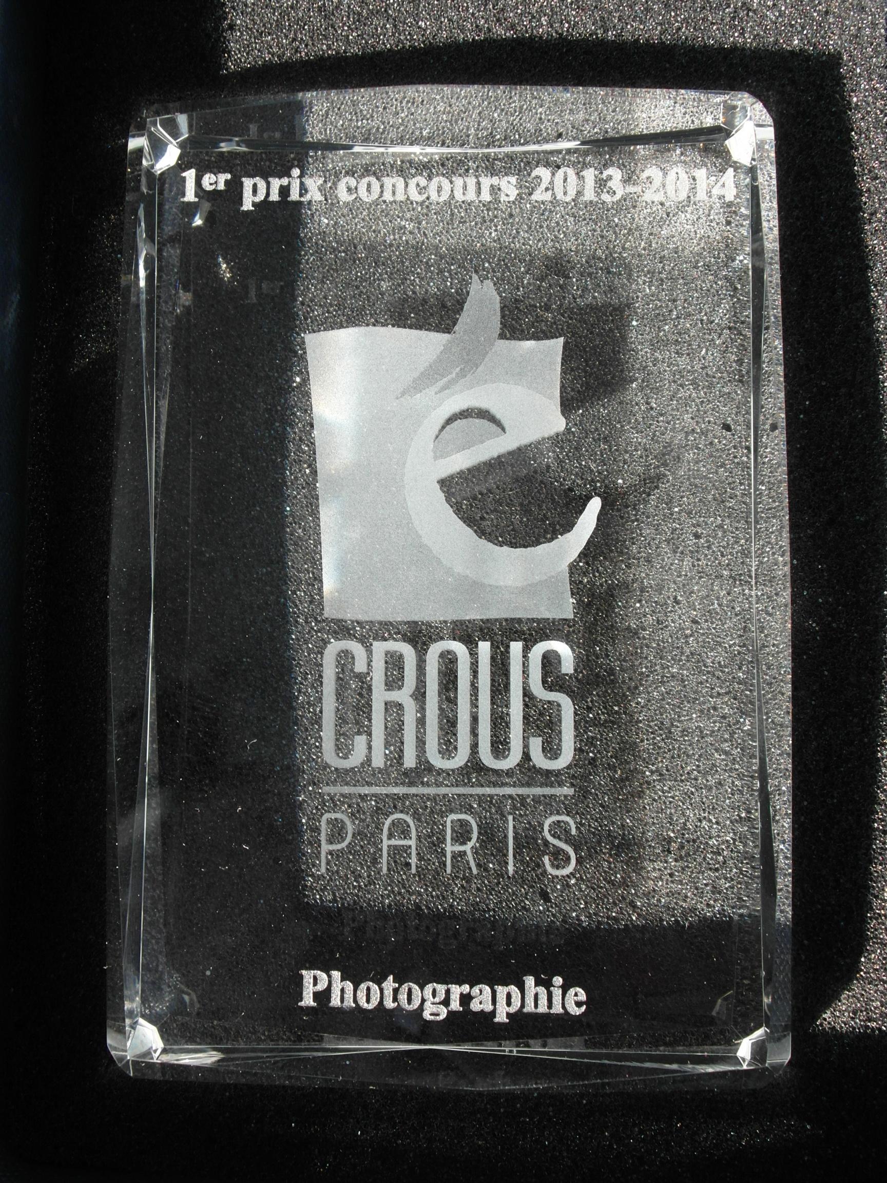 1er Prix du concours artistiaues 2014-Pa