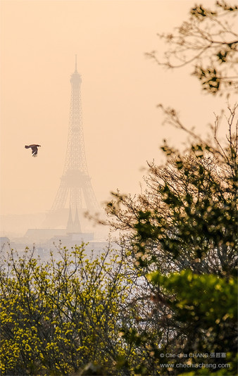 View from Père lachaise cemetery/拉雪茲神父公墓遠眺