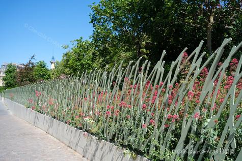 Jardin Nelson-Mandela-35