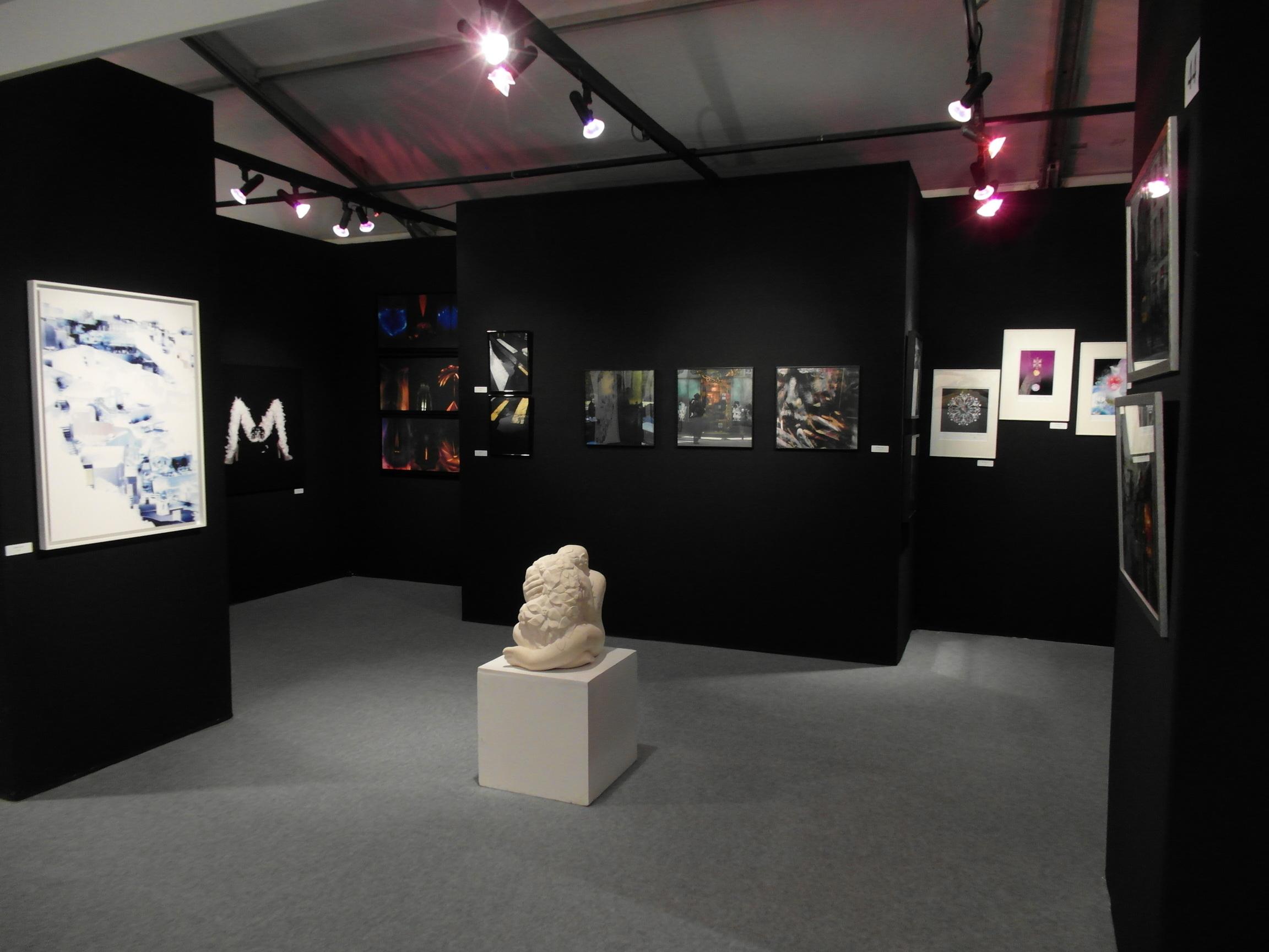 Salon d'Automne-2013-3