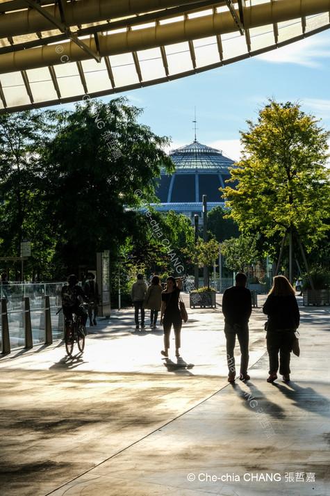 Jardin Nelson-Mandela-2