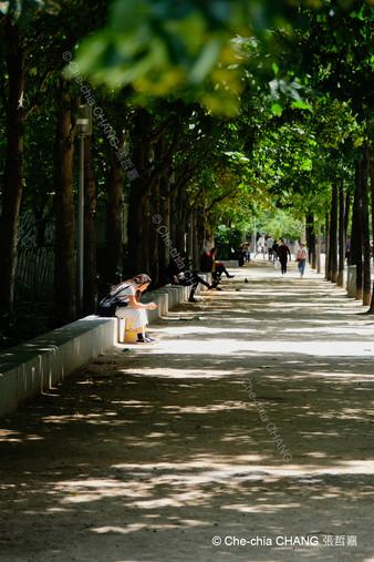 Jardin Nelson-Mandela-13