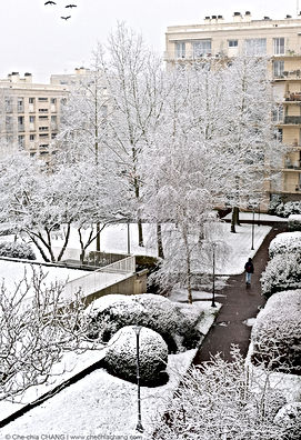 Un jardin résidentiel à Versailles