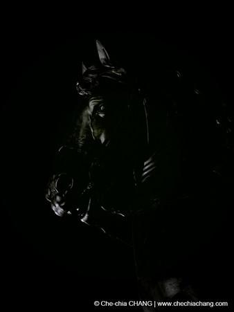 Veilleurs de nuit-2014-5