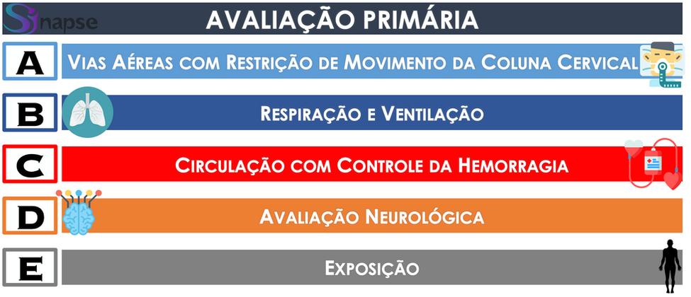 Av_Primária.png