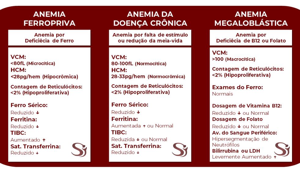 Anemias Fluxogramas 2.png