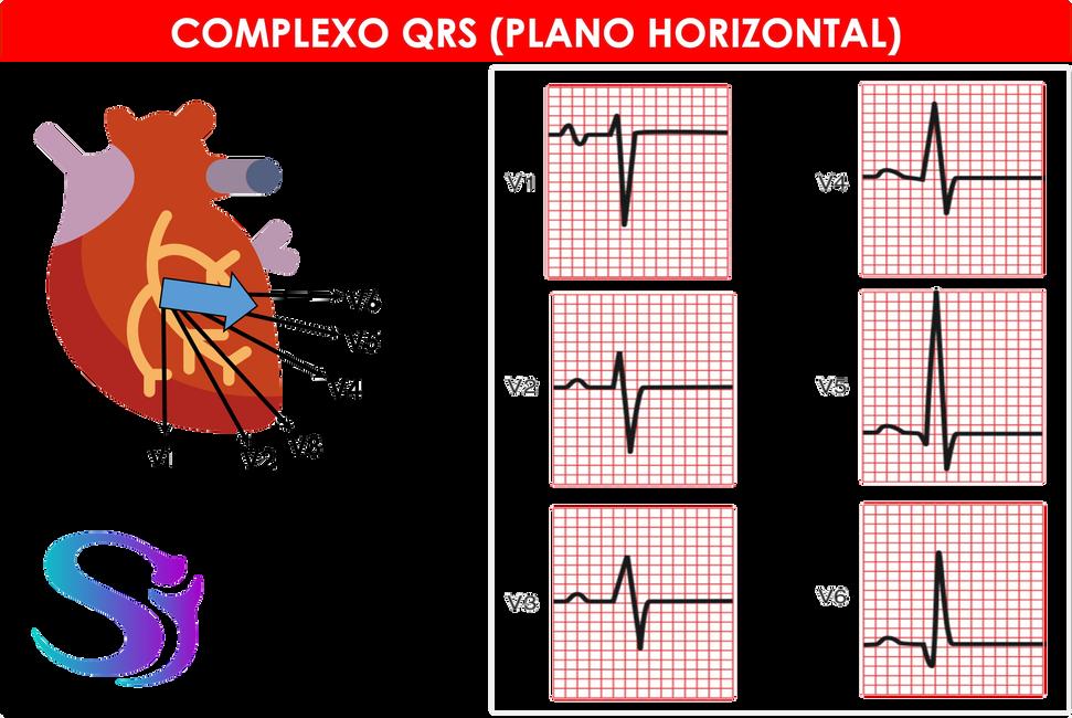 QRS horizontal.png