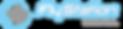 logo_enflystation.png
