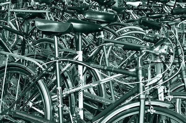 bikes_galore.jpg