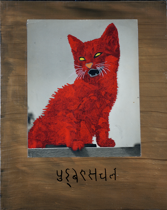 Guard Cat.png