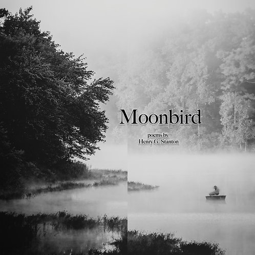 Moonbird (eBook)