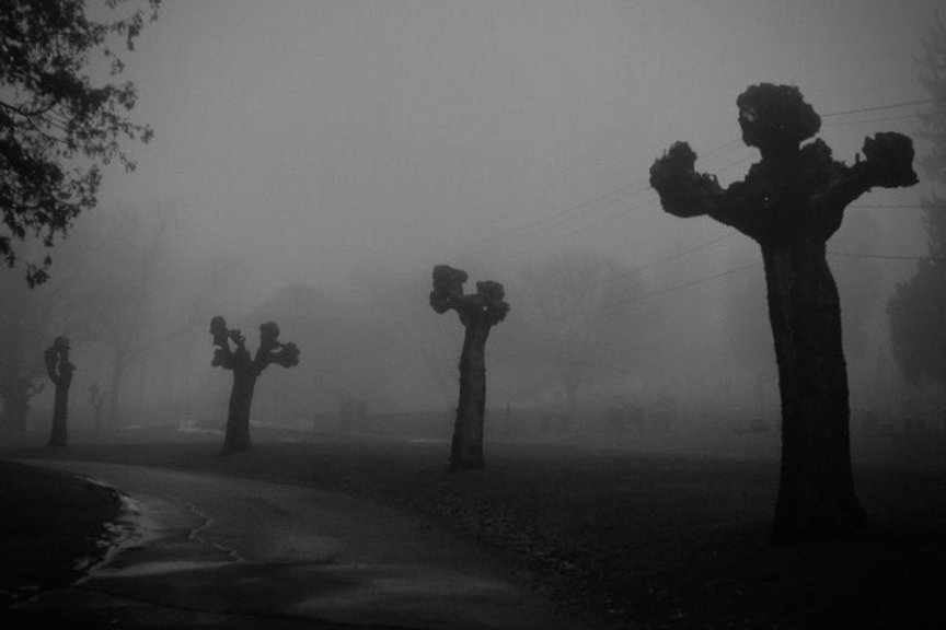 Cemetery_Fists_11.jpeg