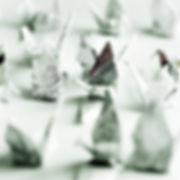 Cronin_2008_02.jpg