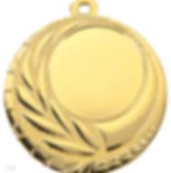 medaille_goud.jpg
