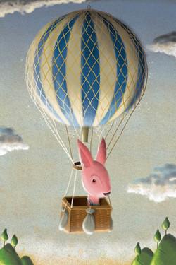 Rhonda in her balloon