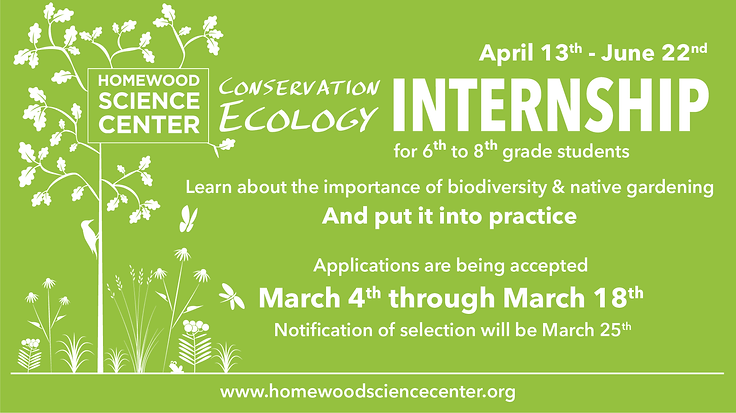 Spring 2019 Ecology internship.png