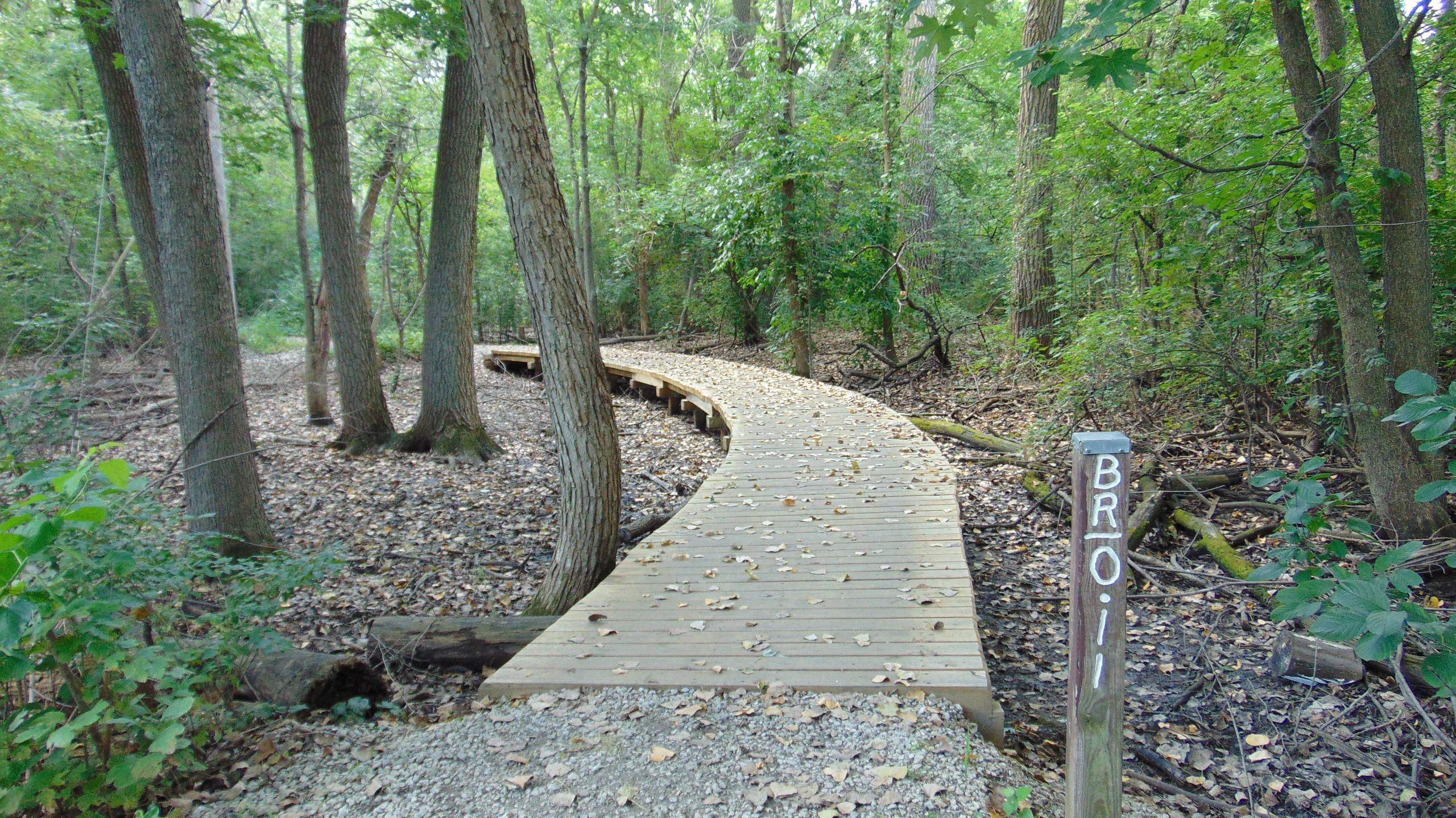 Homewood's Izaak Walton Preserve