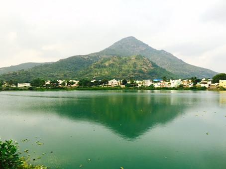 Walkabout #5 インド、ラマナ・アシュラマムへの旅(浅野佳代)