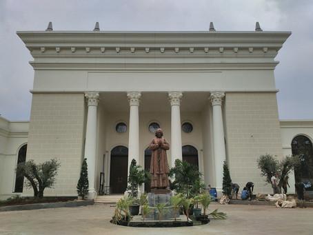 Pohon Zaitun di Halaman Gereja Anak Domba, Paroki Cilangkap