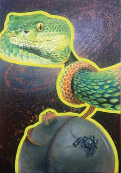 Schlangensommerkoffer