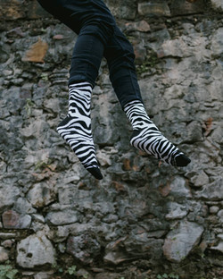 Dynamocks Zebra socks for men & Women