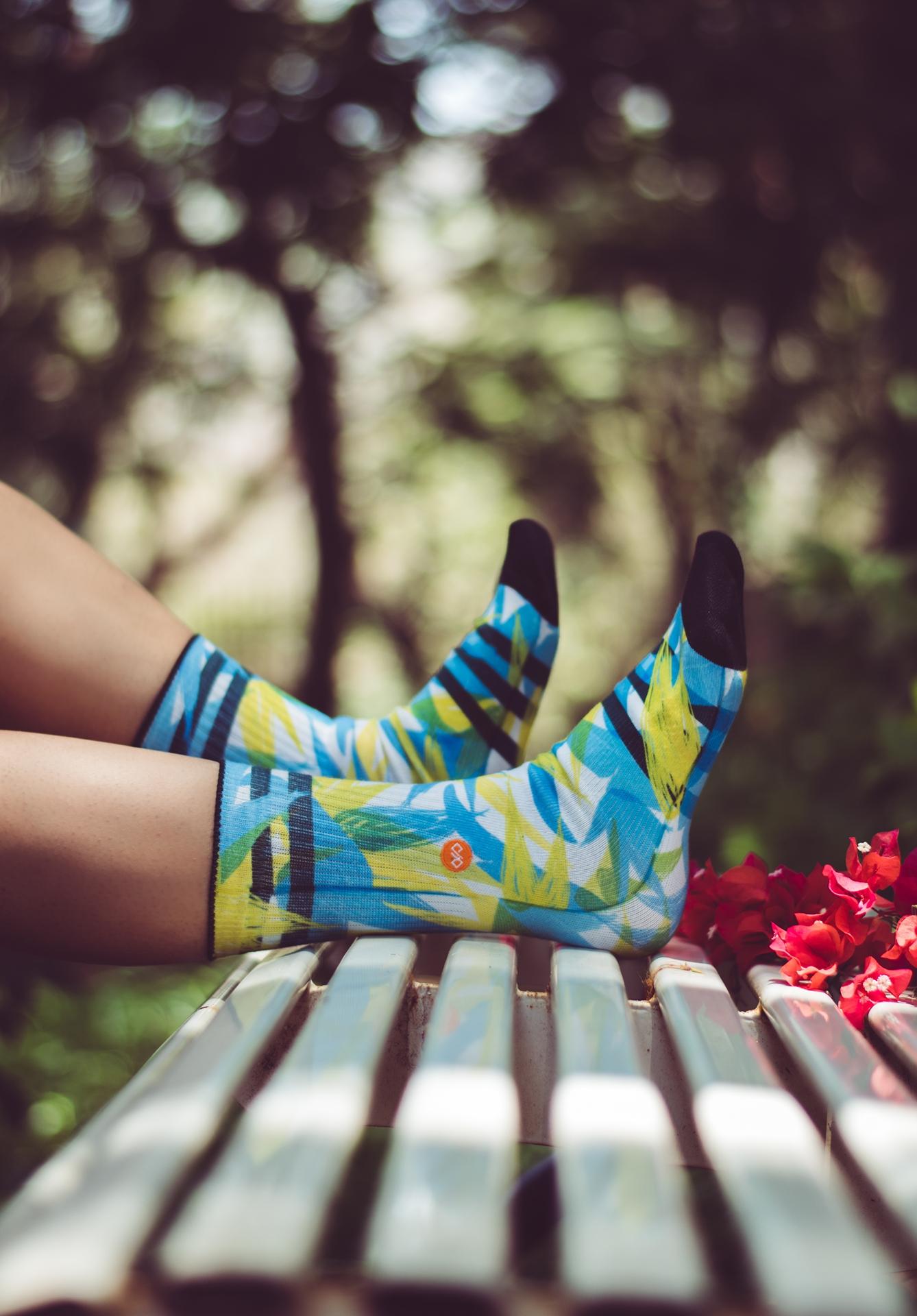 Dynamocks Spring Socks